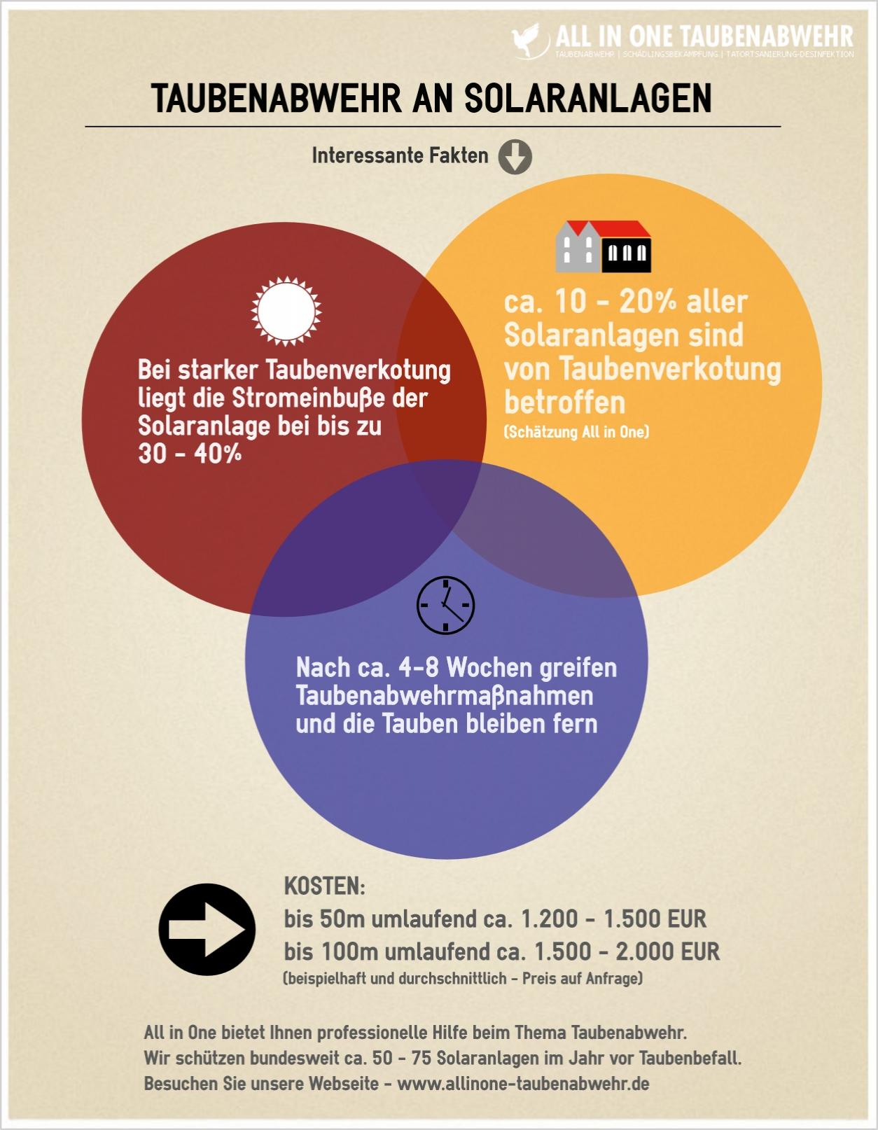 Taubenabwehr an Solaranlagen - Infografik